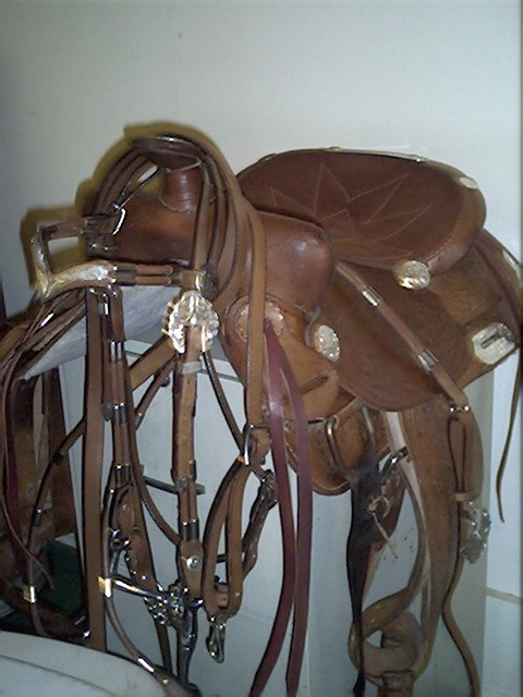 saddleandbridle.jpg